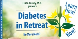 Diabetes in Retreat DVD