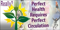 Perfect Health Requires Perfect Circulation DVD