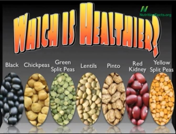 Which Beans Contain the Most Antioxidants?