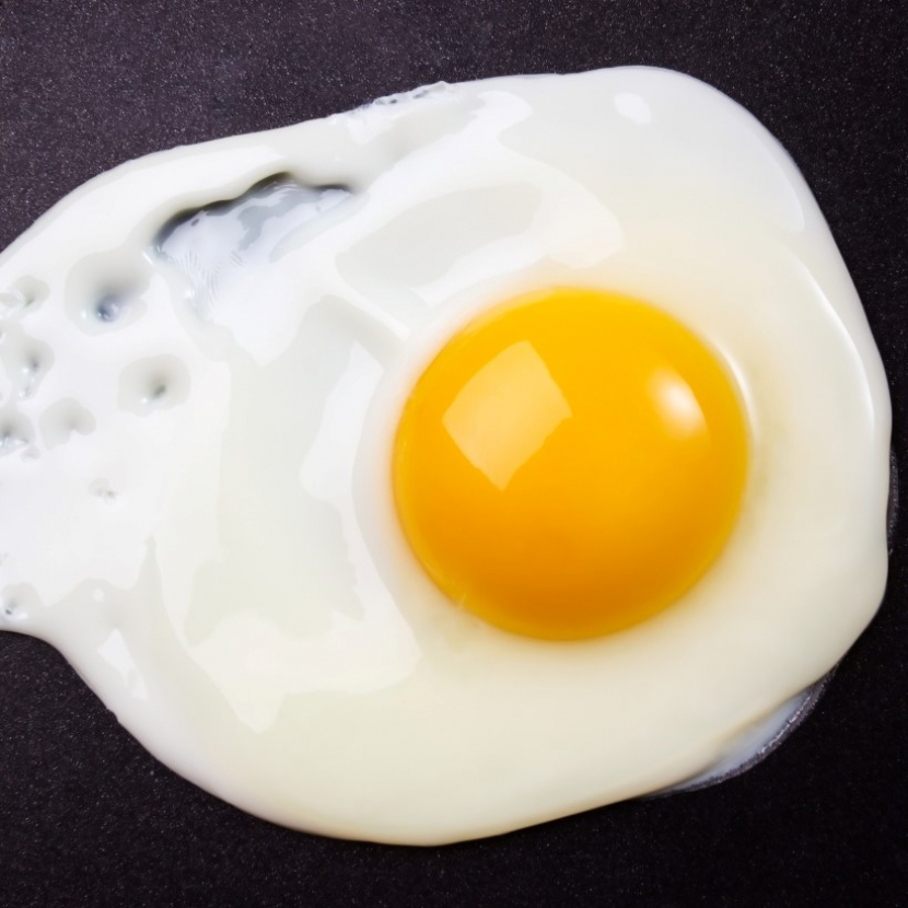 Unscrambling the Truth About Eggs - DrCarney com Blog