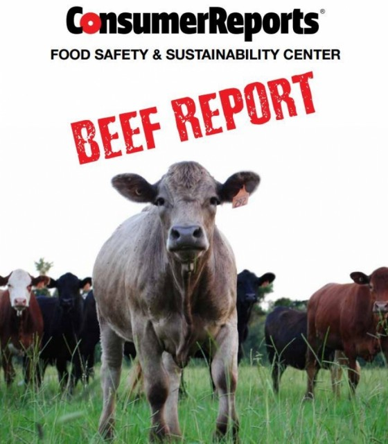 100% of Ground Beef Samples Contain Fecal Bacteria