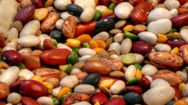 Can Eating Beans Promote Longevity?