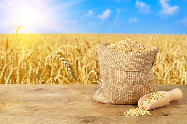 Healing Whole Grains Bathed In Sunshine