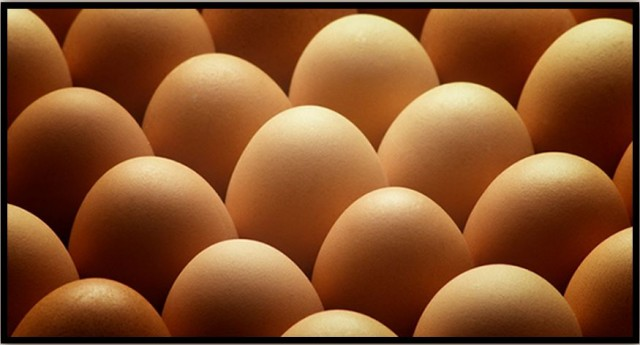 What's Wrong With Eggs?