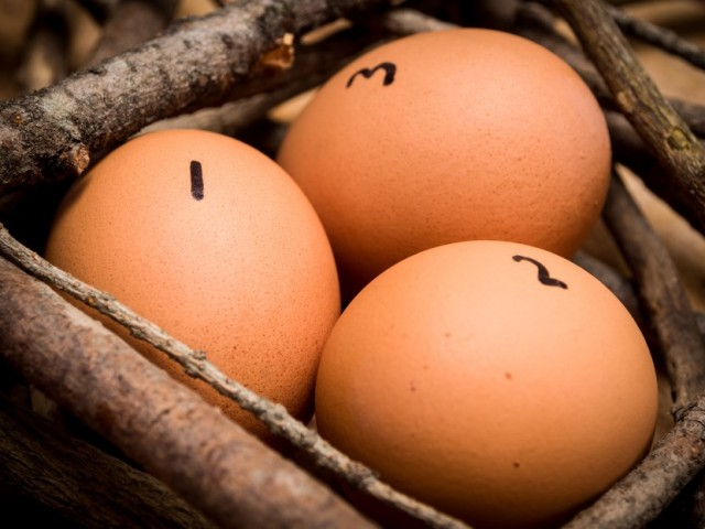Three Numbered Eggs