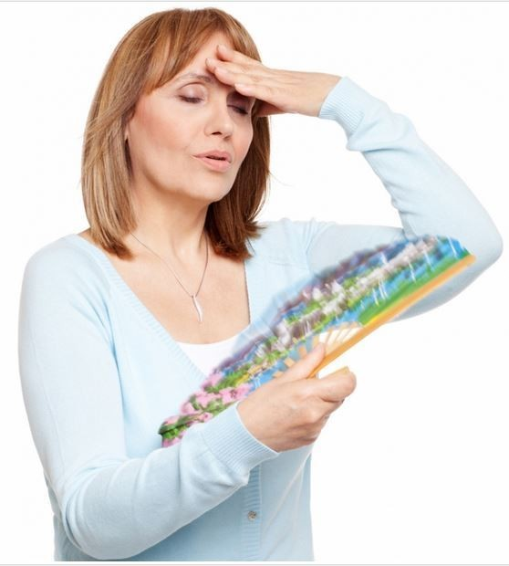 Do our Food Choices Influence Hot Flashes?